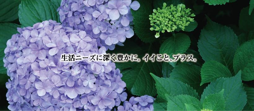 header_june