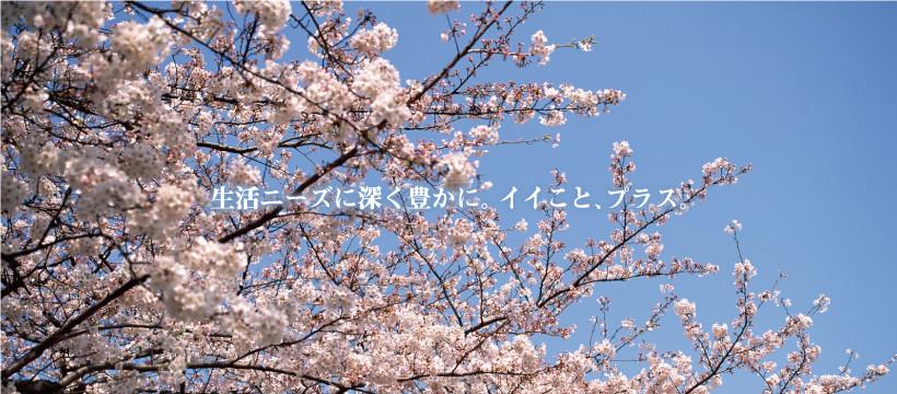 slide_sakura